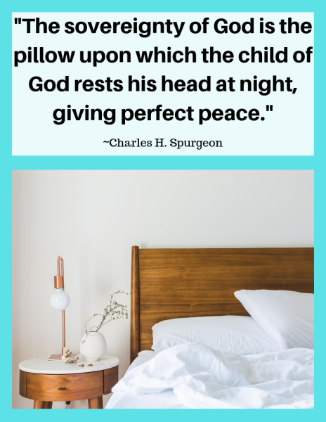 _The sovereignty of God is the pillow upon which the child of God rests his head at night, giving perfect peace._